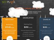 Free Website SEO Analysis