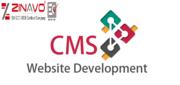CMS Website Development Company