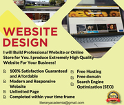 I will Build Professional Website or Online Store for You