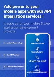 API Integration Servi