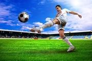Create Fantasy Sports App Like Dream11