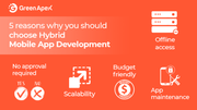 5 reasons why you should choose Hybrid Mobile App Development